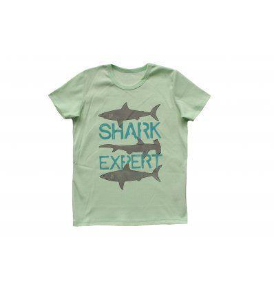 Dječaci - Majice kratkih rukava - Majica kiwi - kratkih rukava - Shark expert